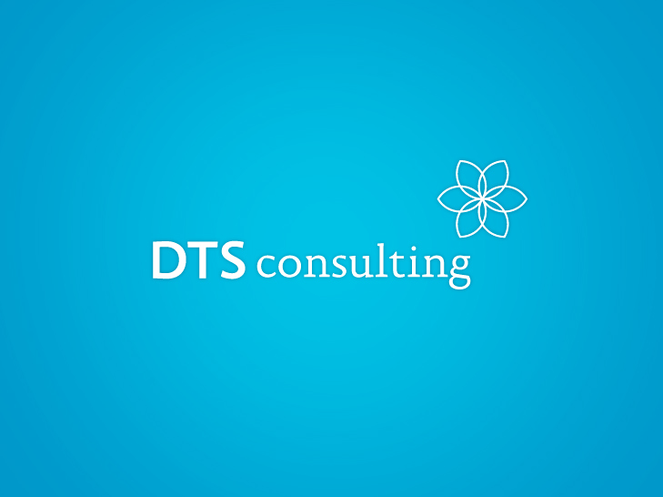 Logo DTS consulting